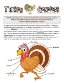 Turkey Genetics
