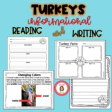 Turkeys Informational Reading and Writing