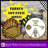 Animal Life Cycle and Thanksgiving Science Activities (Tur