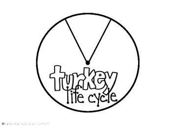 Turkey Life Cycle