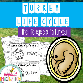 Turkey Life Cycle | 48 Pages for Differentiated Learning + Bonus Pages