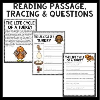 Turkey Life Cycle Activities and Worksheets
