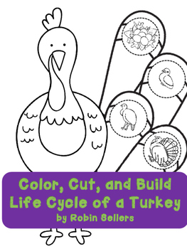 Thanksgiving Activity {turkey life cycle}
