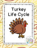 Turkey Life Cycle Pack