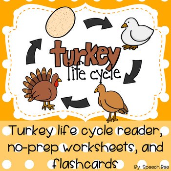 Turkey Life Cycle Thanksgiving Reader