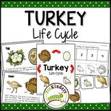 Turkey Life Cycle | Thanksgiving Science | Preschool Pre-K