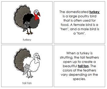 Turkey Nomenclature Book