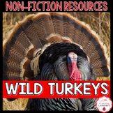 Turkey Non-Fiction Resources {Close Reads & Informational Text}