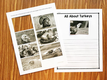 Turkey Nonfiction Story