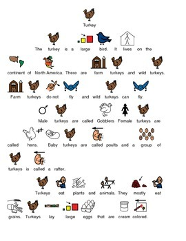 Turkey - Picture supported text review article lesson with questions facts info