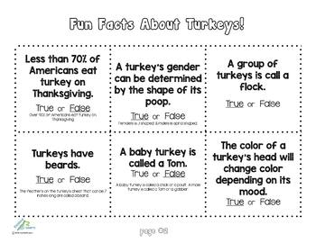 Turkey Puppet and Fun Turkey Facts (Great Craft for Thanksgiving)