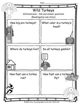Turkey Questions