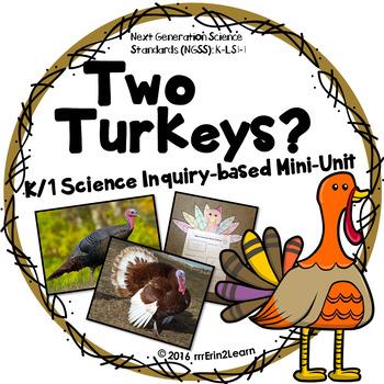 Turkey Science Unit Kindergarten