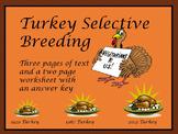 Turkey Selective Breeding