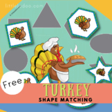 Turkey Shape matching