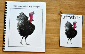 Turkey Themed Movement and Imitation (Movement Cards and Book)
