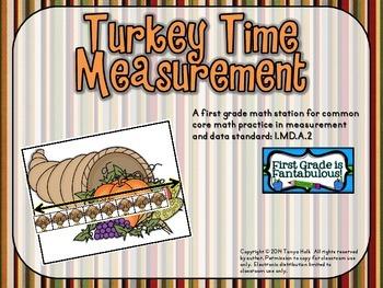 Turkey Time Measurement