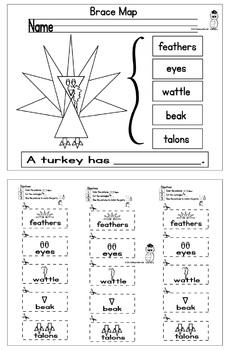 Turkey Triangle Brace Map