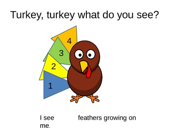 Turkey, Turkey What Do You See?