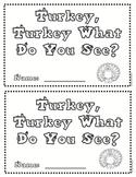 Turkey, Turkey What Do You See?