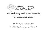 Turkey, Turkey, What do you see? Adapted story and Activit