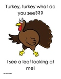 Turkey, Turkey what do you see? Thanksgiving book