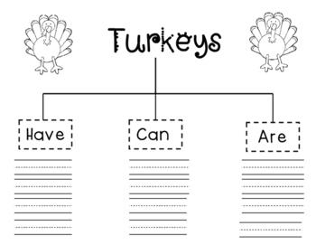 Turkey  Writing & Craftivity
