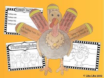 Turkey facts - Thankful Turkey