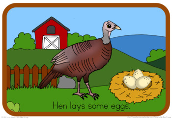 Turkey life cycle book (simplified version)