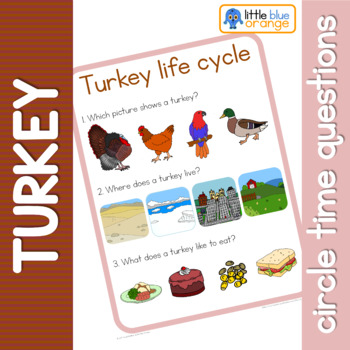 Turkey life cycle circle time questions