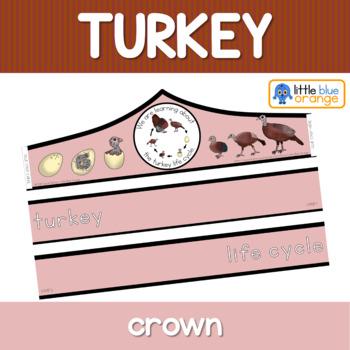 Turkey life cycle crown