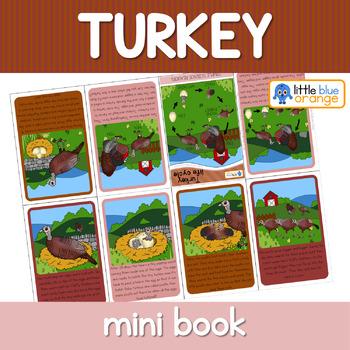 Turkey  life cycle mini book