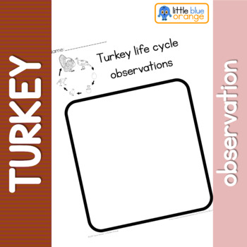 Turkey life cycle observation sheet