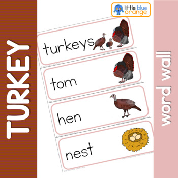 Turkey life cycle word wall