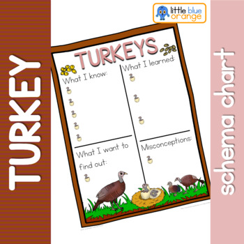 Turkey schema  worksheet