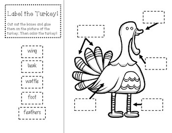 Turkey Graphic Organizer and Labeling Page