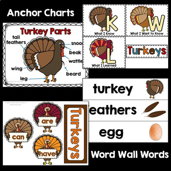 Turkeys Non-fiction Unit with PowerPoint, Video, and Printables