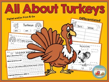 All About Turkeys, Writing Activities, Graphic Organizers, Diagram