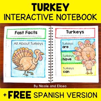 Interactive Notebook - Turkey Activities