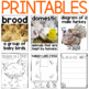 Turkey Activities and Printables for Thanksgiving