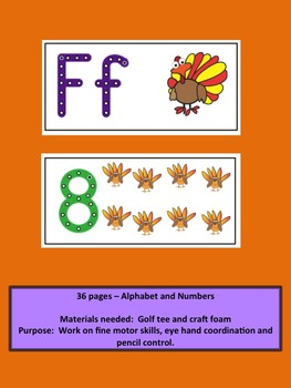 Turkeys Alphabet and Numbers Crazy Punch Dot Center for Fine Motor