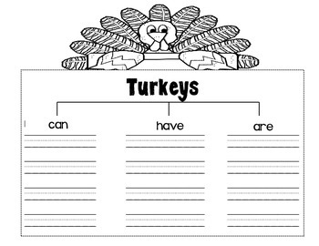 Turkeys Can/Have/Are Writing