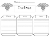 Turkeys Have/Are/Can Graphic Organizer