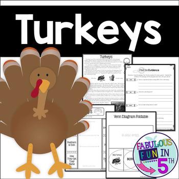 Turkeys: Nonfiction Passage and Foldables