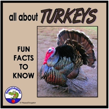 Turkeys PowerPoint - Fun Facts All About Turkeys