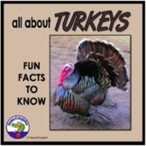 Turkeys PowerPoint - Fun Facts All About Turkeys