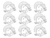 Turkeys for Turkey Measurement Form