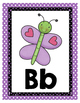 Turquoise, Purple and Green Classroom Decor