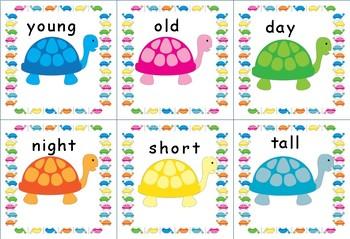 Turtle Antonyms