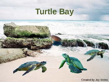 Turtle Bay- A Harcourt Trophies Anthology
